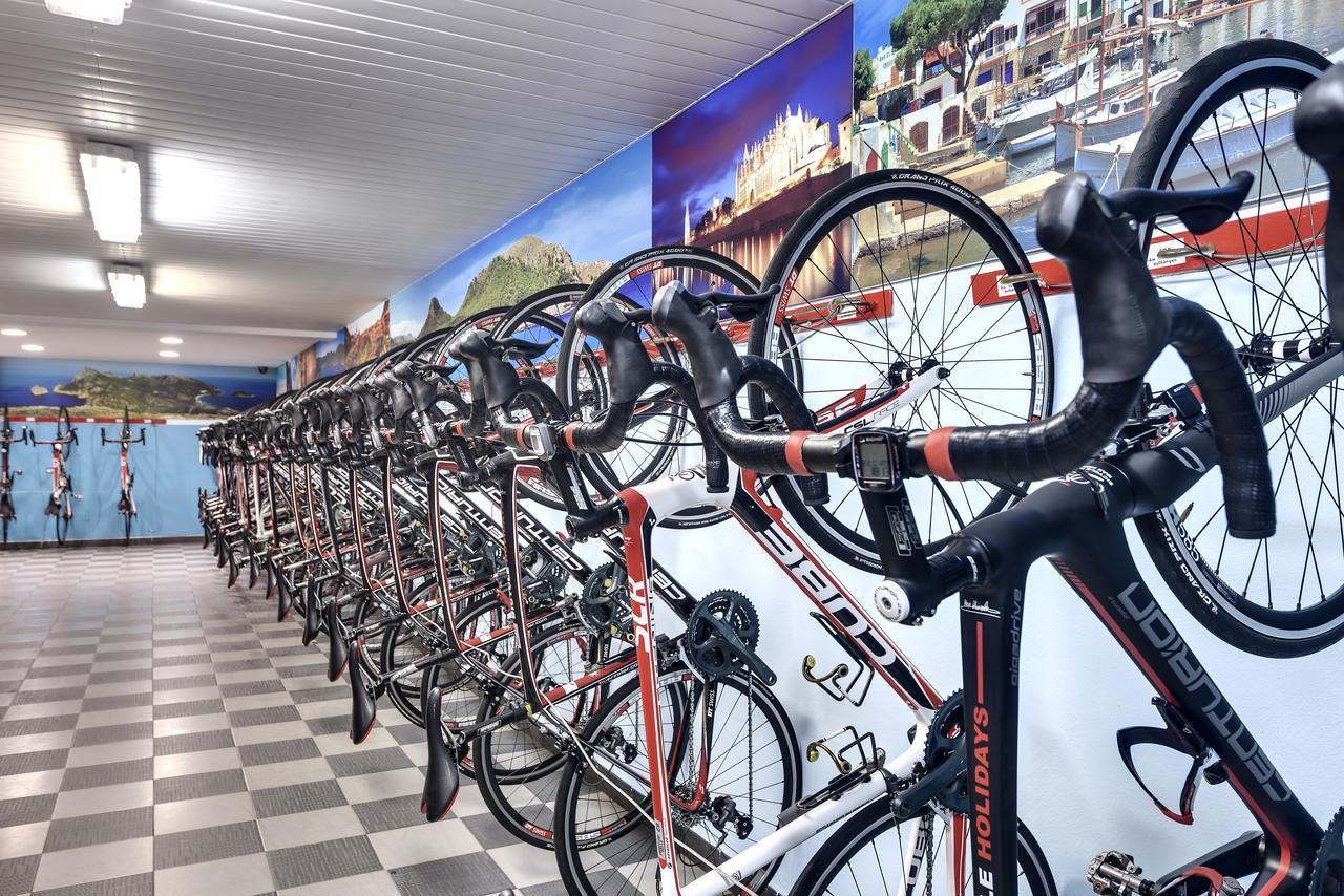 bike rentals Palma